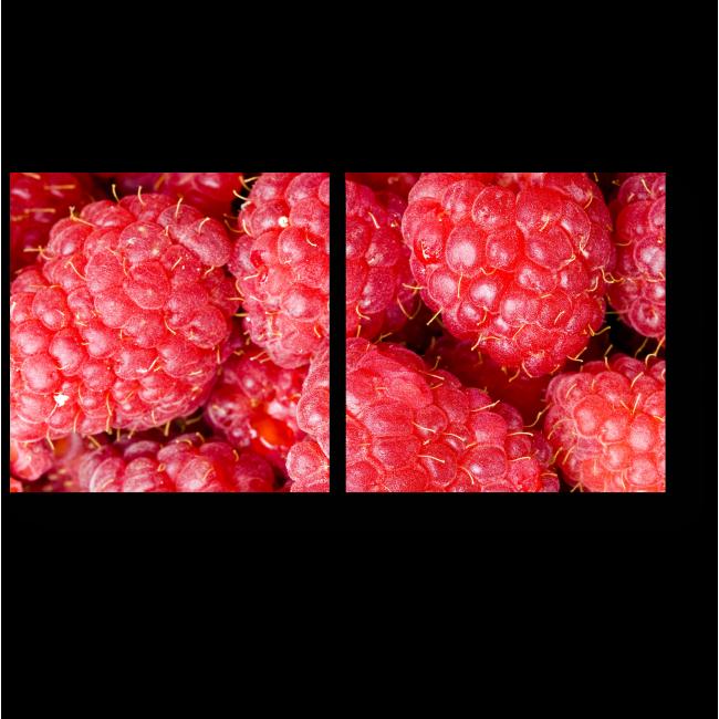Модульная картина Крупные ягоды малины