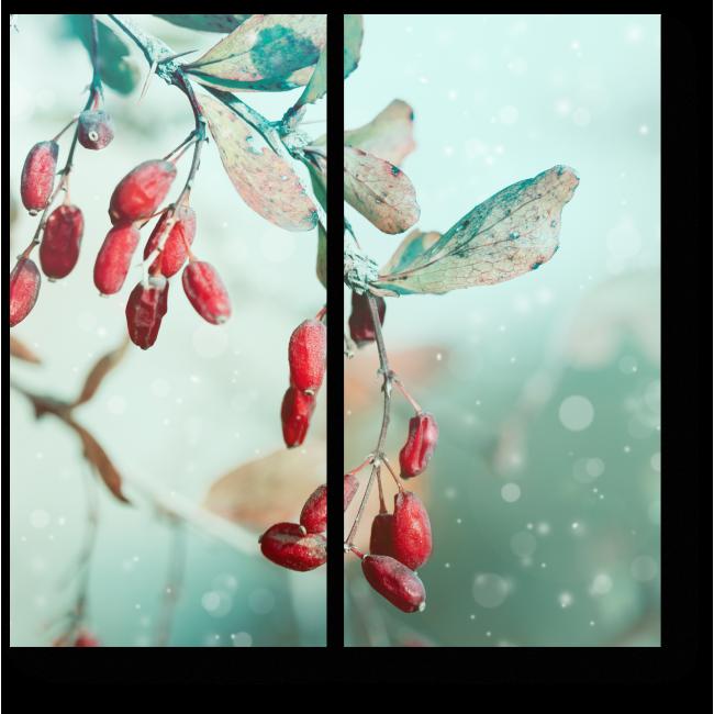 Модульная картина Красные ягоды, припорошенные снежком