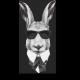 Заяц - секретный агент