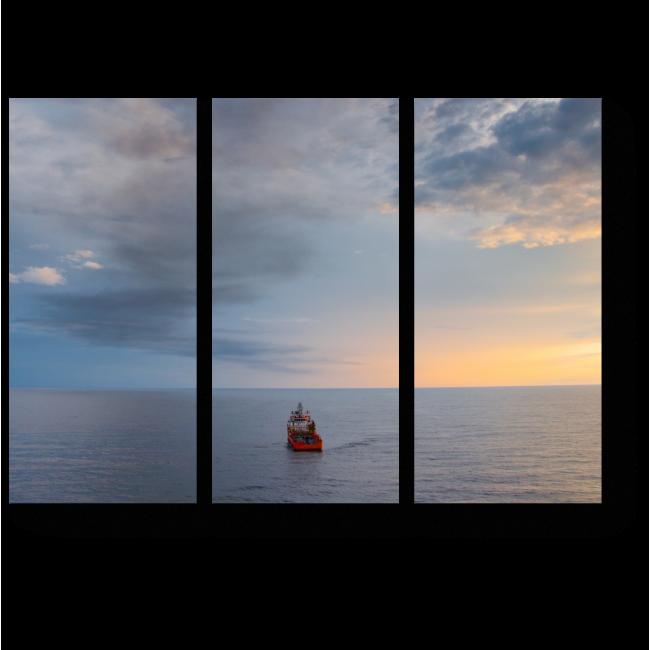 Модульная картина Свободное плавание
