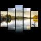 Лебеди в шотландском озере