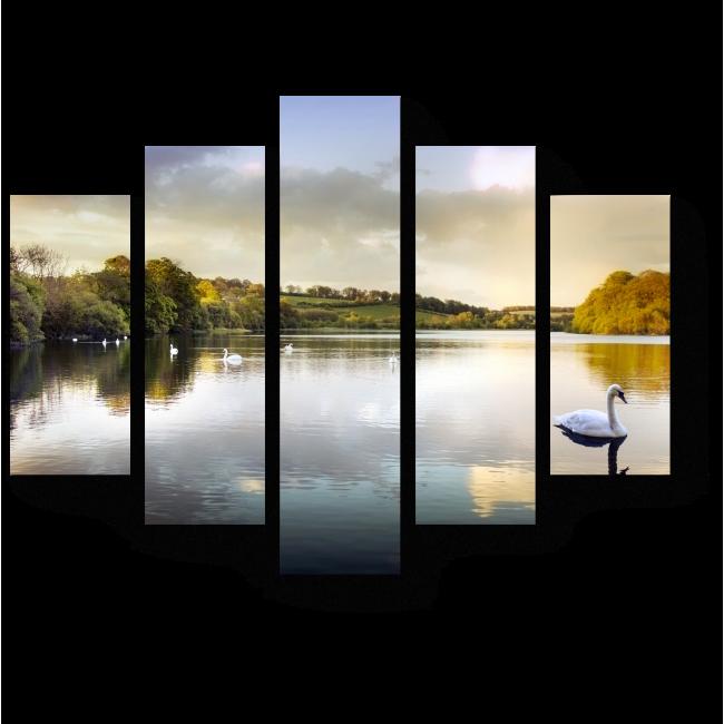 Модульная картина Лебеди в шотландском озере