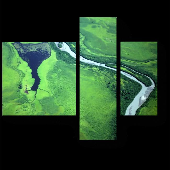 Модульная картина Зеленые поля и река с высоты птичьего полета