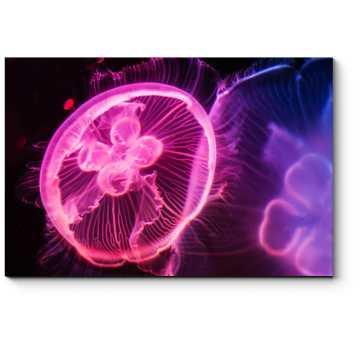 Модульная картина Неоновая медуза