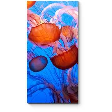 Модульная картина Чарующие океанские медузы