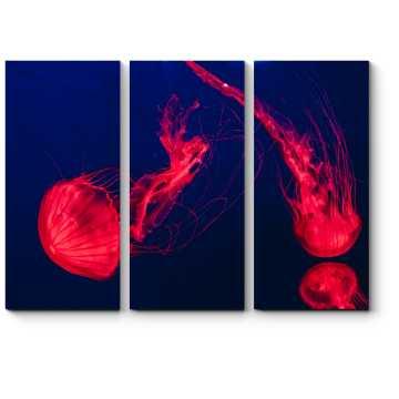 Модульная картина Алая медуза