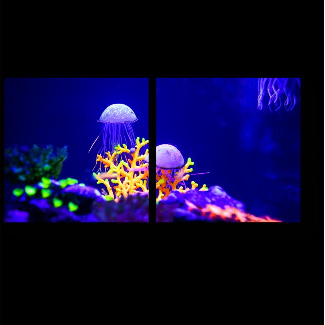 Модульная картина Яркий мир кораллов и медуз