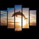 Завораживающий прыжок дельфина на закате