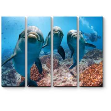 Модульная картина Портрет трио дельфинов