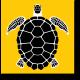 Черно-желтая арт черепаха