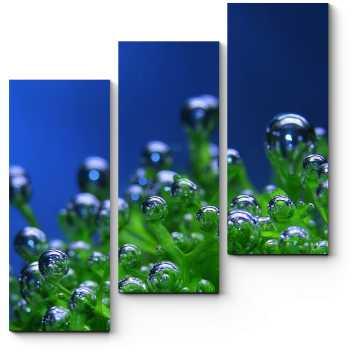 Модульная картина Пузырьки воды на водорослях