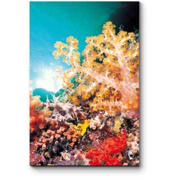 Модульная картина Яркий коралловый мир