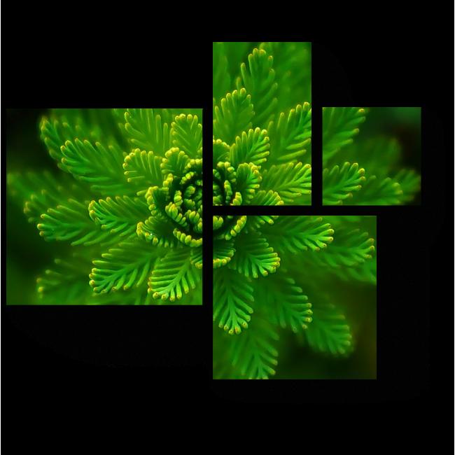 Модульная картина Зеленый житель подводного мира