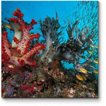 Модульная картина Подводный пейзаж