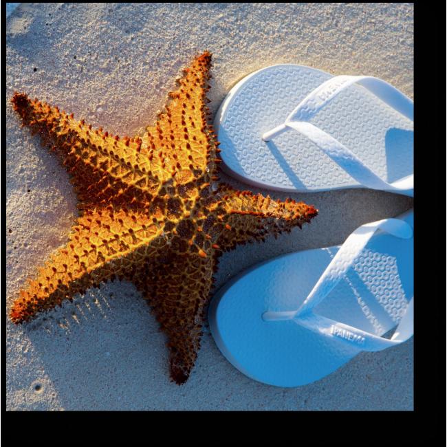 Модульная картина На пляже с белым песком