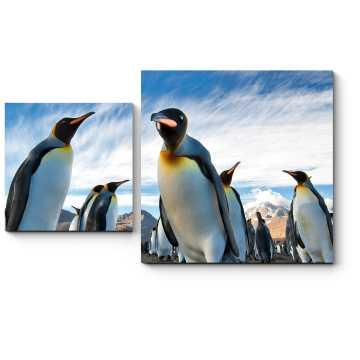 Модульная картина Любопытные пингвины