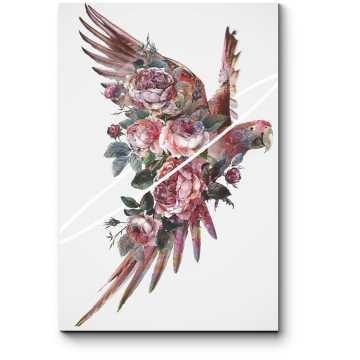 Прекрасная птица