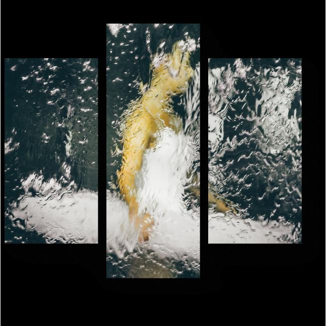Модульная картина Прекрасная балерина