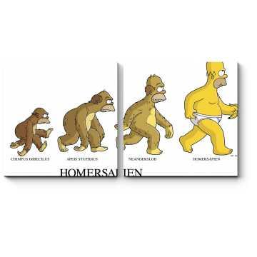 Эволюция Гомера