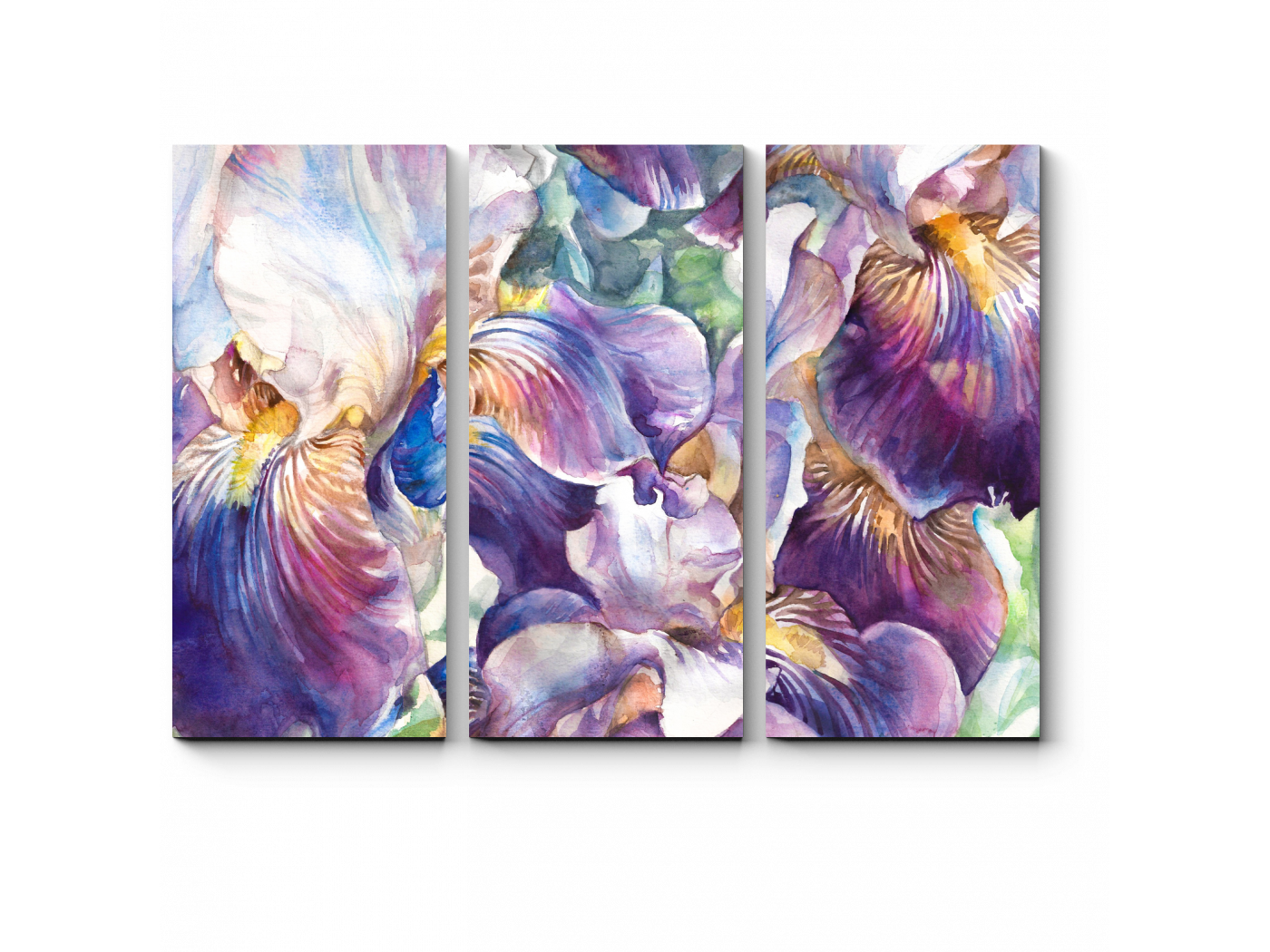 Модульная картина Фиолетовые ирисы (60x43) фото