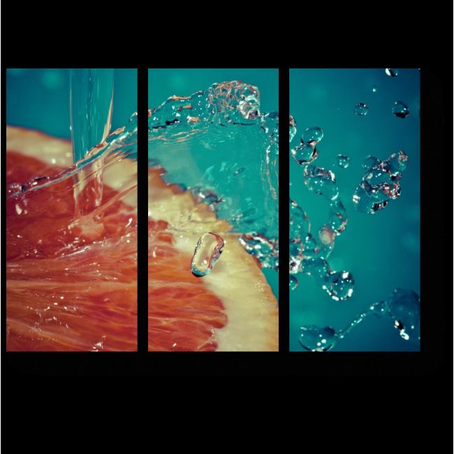 Модульная картина Цитрусовые брызги