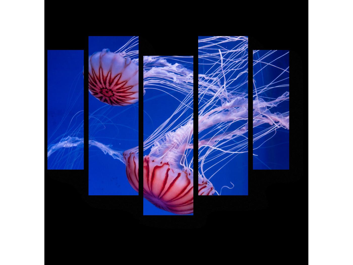 Модульная картина Чудесные медузы (101x82) фото