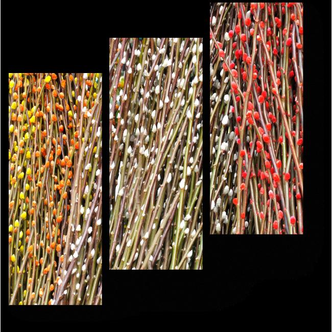 Модульная картина Ветки персика
