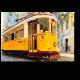 Лиссабонский старожил