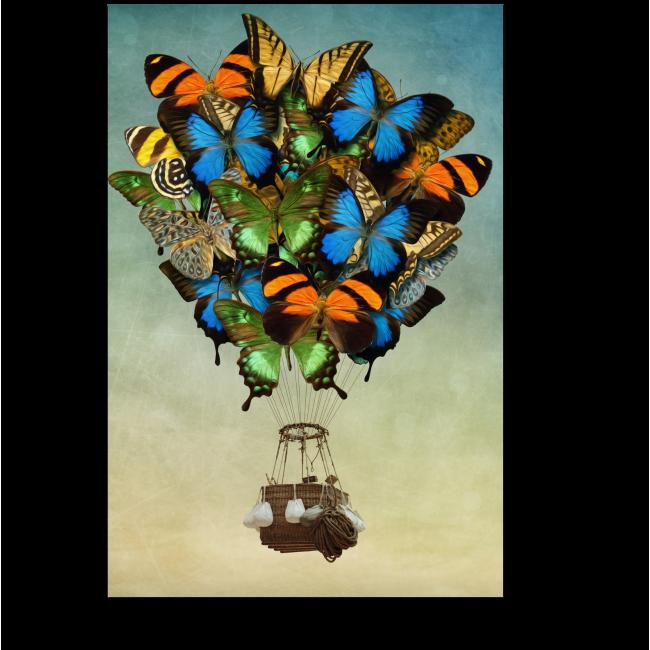 Модульная картина Воздушный шар из бабочек
