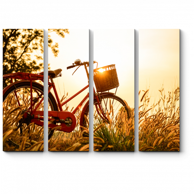 Модульная картина Прогулка на велосипеде