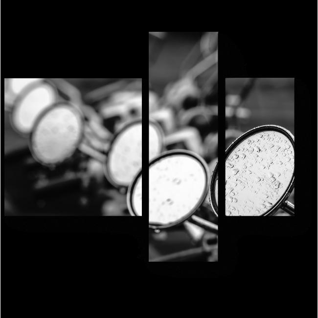 Модульная картина Макро мопед