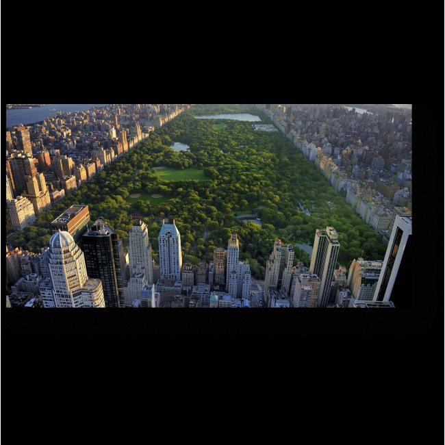 Модульная картина Центральный парк с высоты птичьего полета