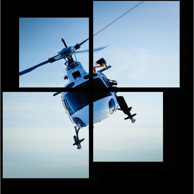 Модульная картина Воздушный патруль