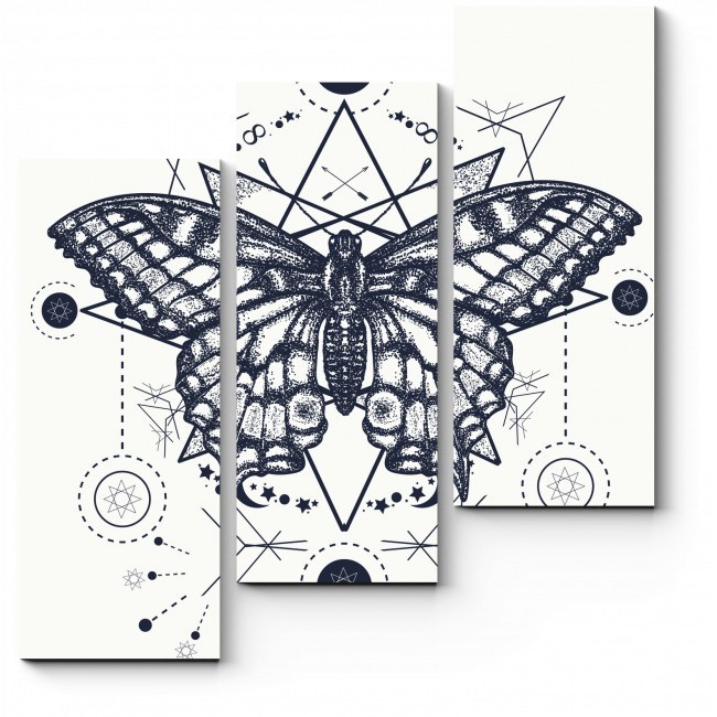 Модульная картина Эскиз бабочки