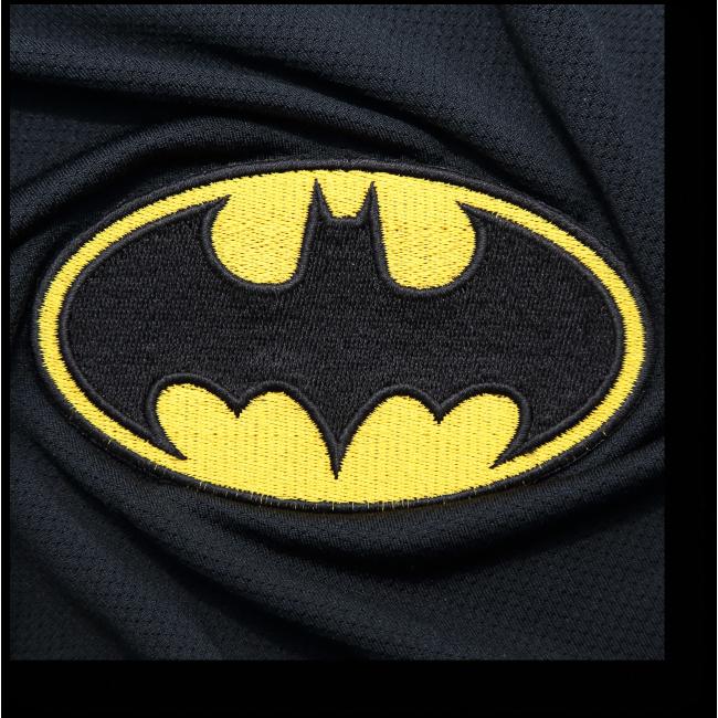 Модульная картина Знак Бэтмена