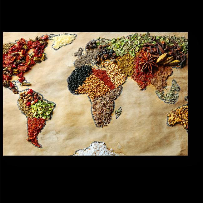 Модульная картина Пряная карта мира