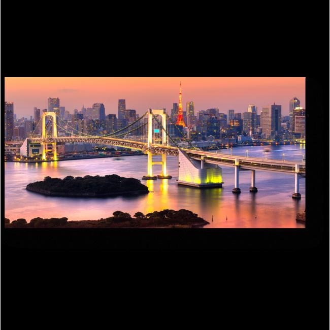 Модульная картина Радужный мост на закате, Токио