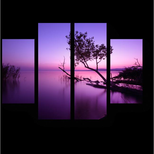 Модульная картина Фантастический закат