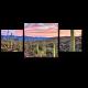 Закат в пустыне Соноран