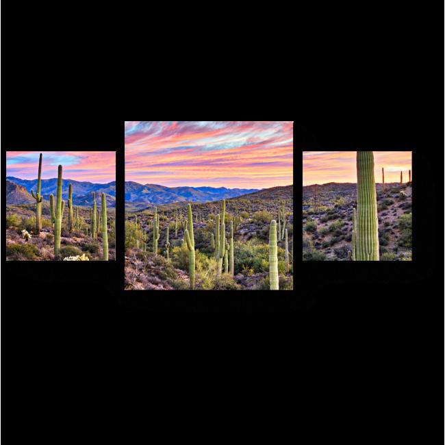Модульная картина Закат в пустыне Соноран