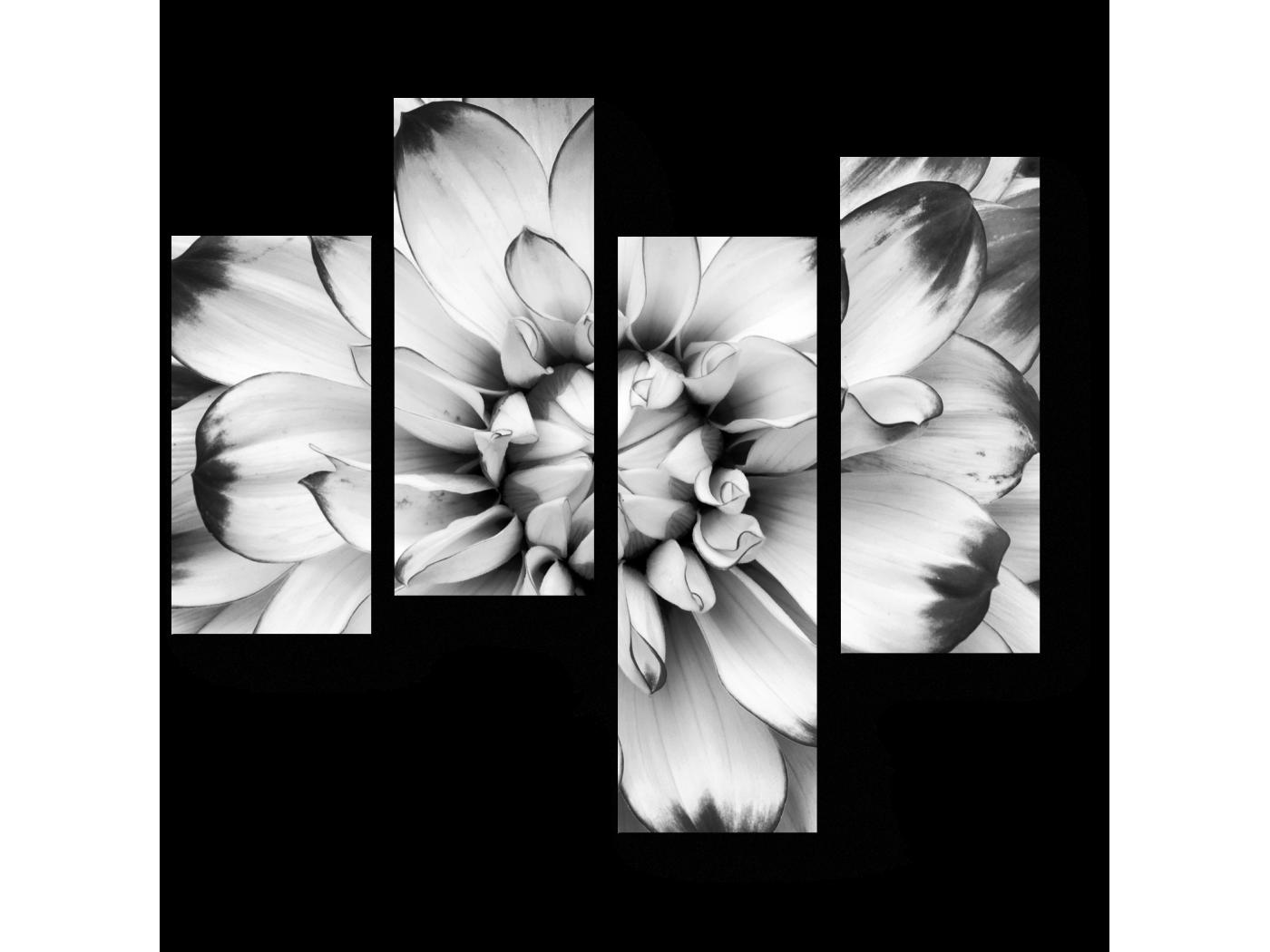 Модульная картина Бутон гардении (64x60) фото