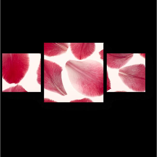 Модульная картина Лепестки роз