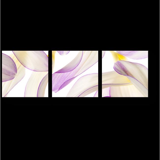 Модульная картина Летящие лепестки