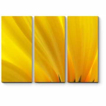 Модульная картина Желтые лепестки