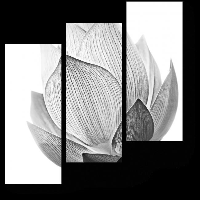 Модульная картина Бутон Лотос