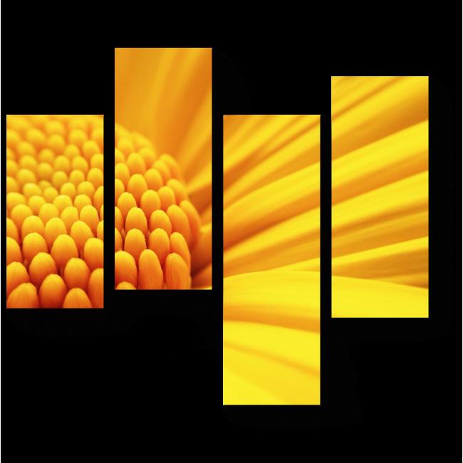 Модульная картина Солнечный гербер