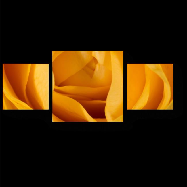Модульная картина Солнечная роза
