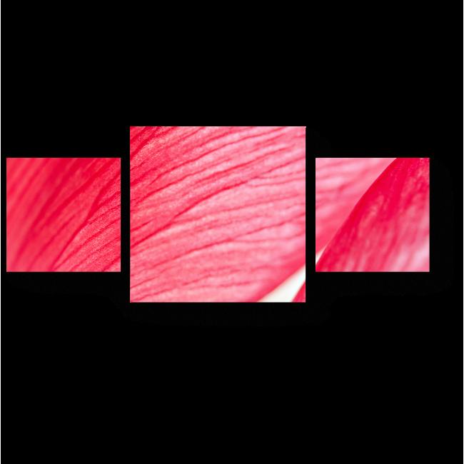 Модульная картина Аромат розы