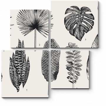 Модульная картина Гербарий из экзотических растений
