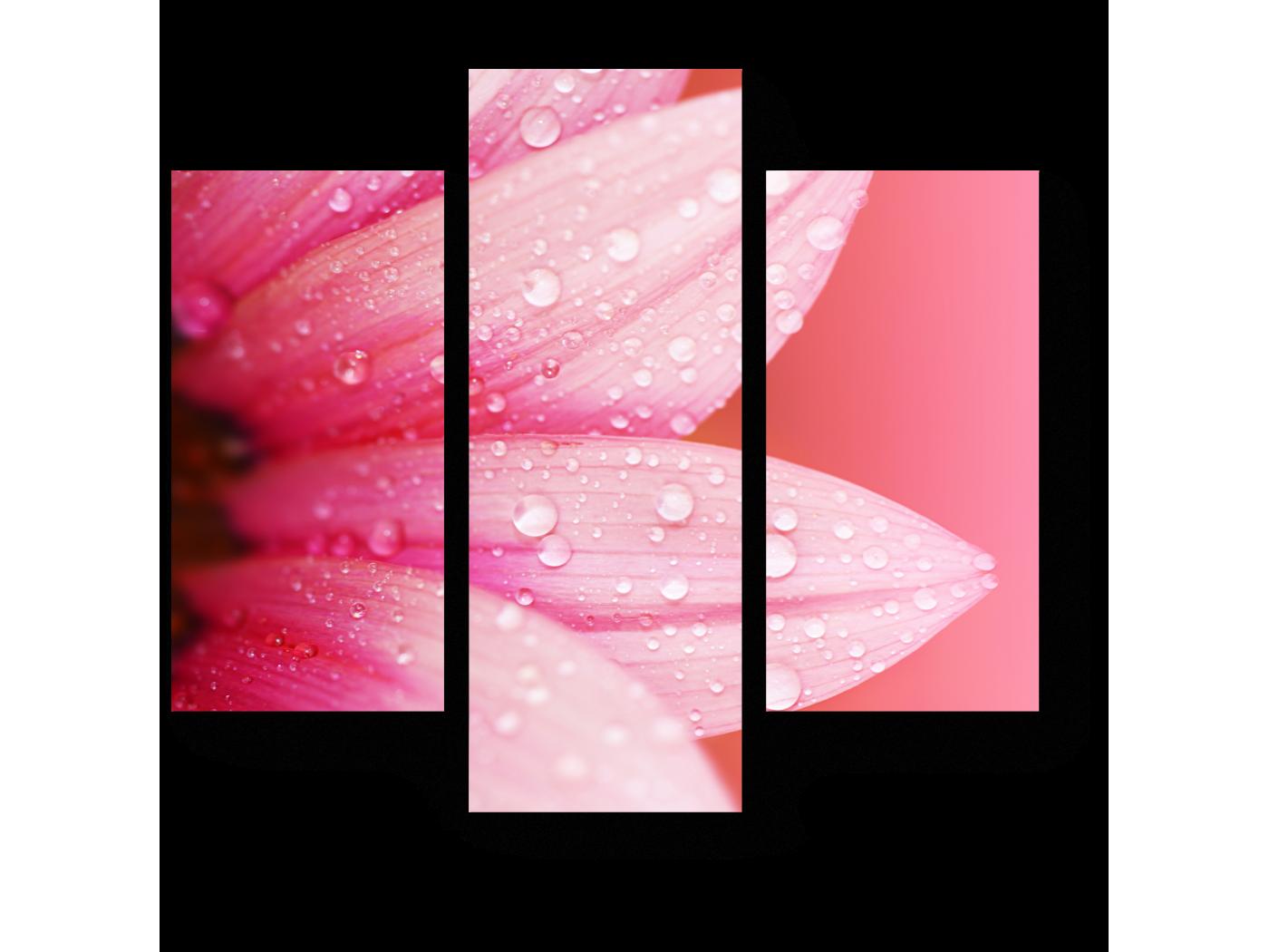 Модульная картина Весенняя красота (60x54) фото